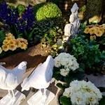 Zum-Edengarten_2021_Blumen_fruehjahr_6