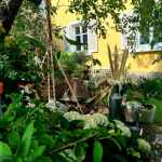 00004_2021_sommer_zum-edengarten