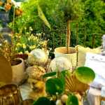 00014_2021_sommer_zum-edengarten