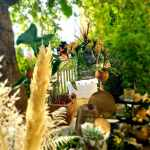 00036_2021_sommer_zum-edengarten